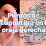 Puntos de acupuntura en la oreja derecha